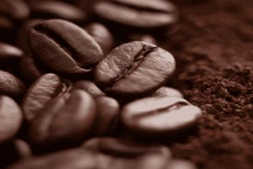 Alimentos que não devem ir à geladeira - café
