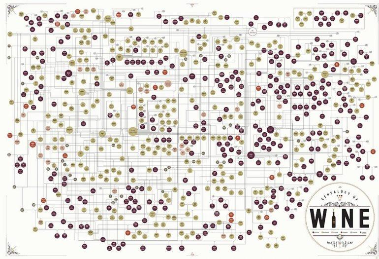 Poster Genealogia do Vinho