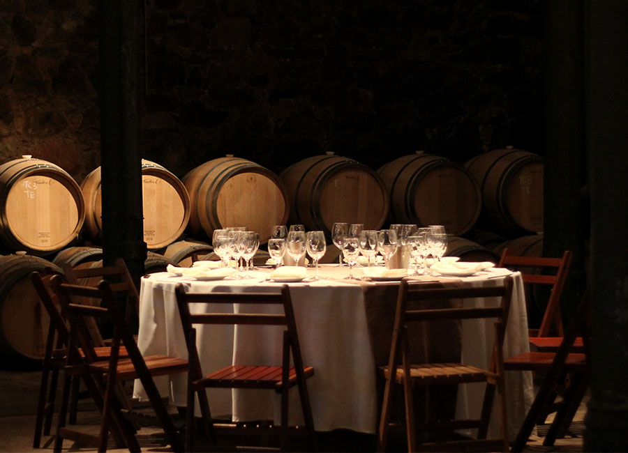 Guia de Enoturismo no Uruguai: 5 vinícolas incríveis