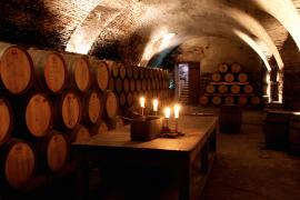 Visita a vinicola Juanico Uruguai