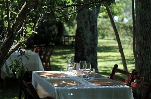 Guia do Enoturismo no Uruguai 5 vinícolas incríveis