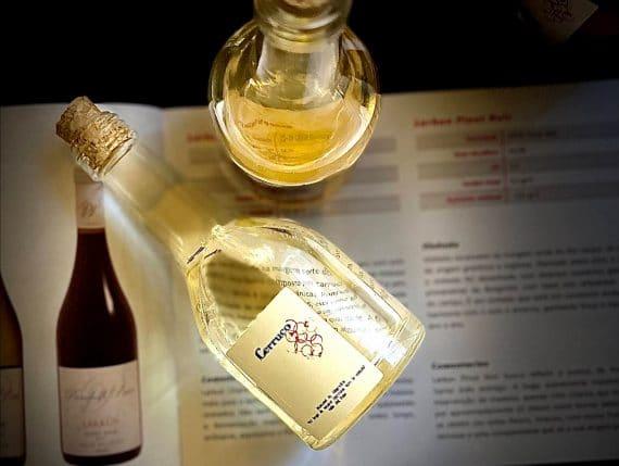 Descubra o Vale do Itata, região vitivinícola escondida no Chile